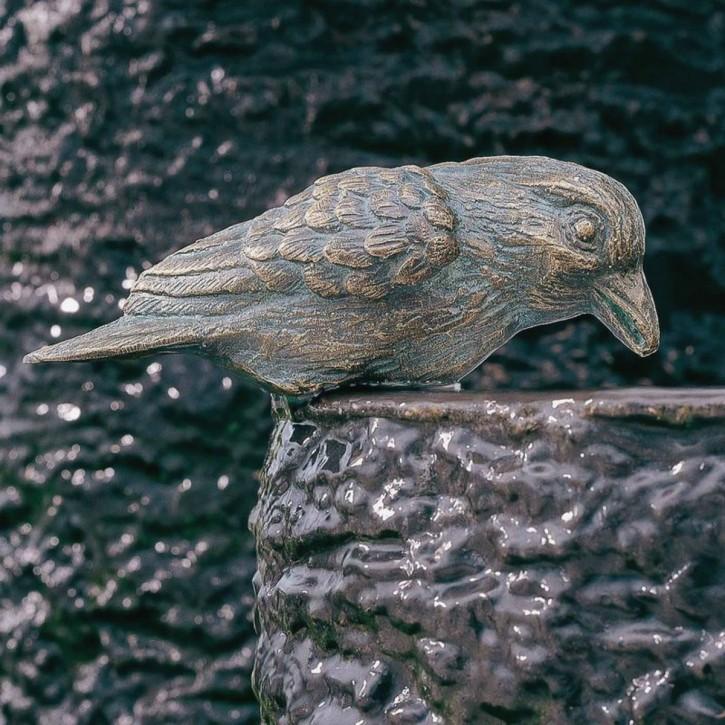 Bronzefigur Vogel Haussperling 5 cm Bronze Gartenfigur Rottenecker